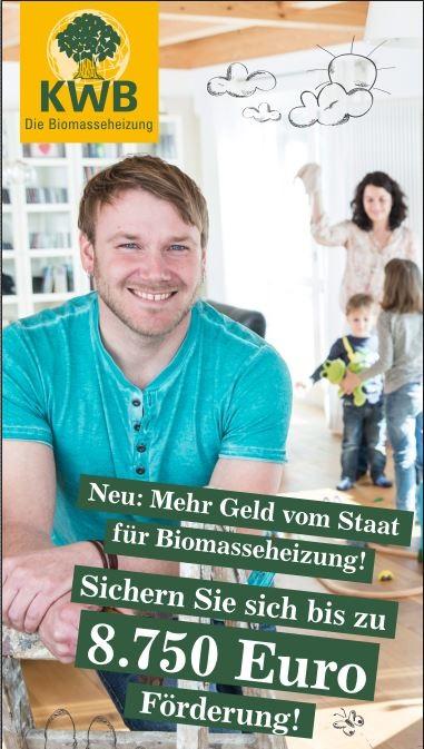Förderung Biomasseheizung